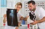 Diagnostik Kosten in der Hunde-OP Versicherung
