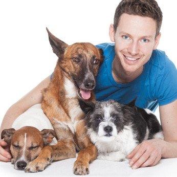 Hundehaftpflicht Kampfhundeverordnung