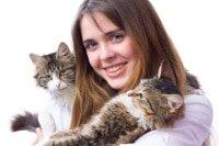Katzenversicherung für mehrere Katzen