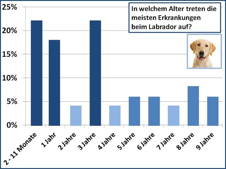 Altersstatistik der Erkrankungen beim Labrador