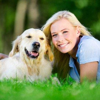 Hundehaftpflicht Versicherungsvergleich
