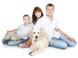 Hundekrankenversicherung Labrador-Retriever