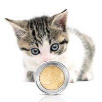 Katzenkrankenversicherung ohne Selbstbeteiligung