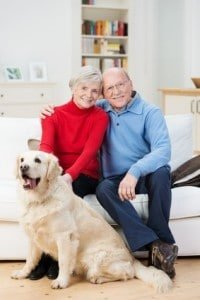 Hundehaftpflicht Senioren