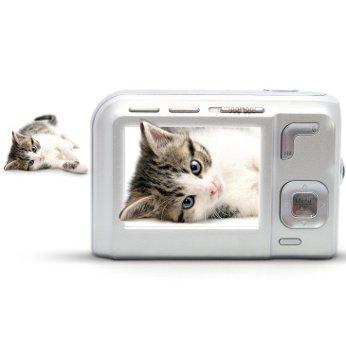 Katzenversicherung Video