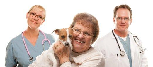 Senioren Hundekrankenversicherung