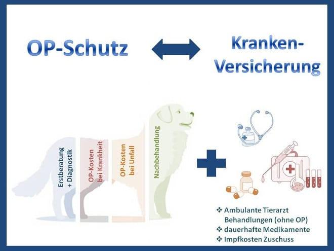 Unterschied zwischen Hundekrankenversicherung und Hunde-OP Versicherung
