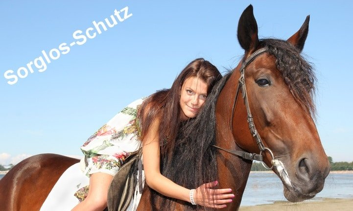 Pferdekrankenversicherung als Sorglosschutz