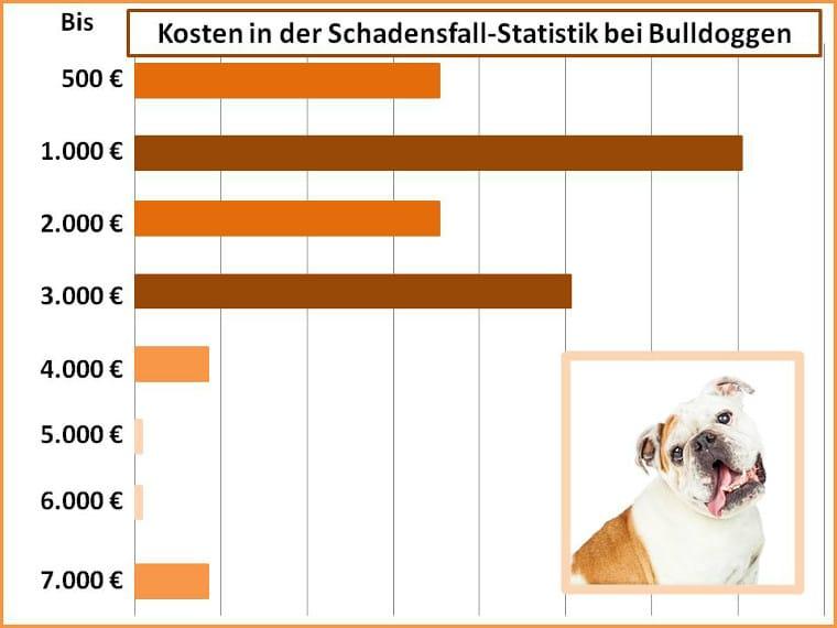 OP-Kosten bei der Bulldogge