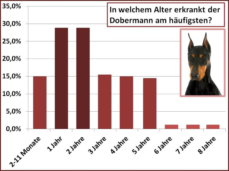 Altersstatistik Dobermann