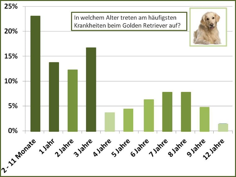 Altersstatistik Golden Retriever