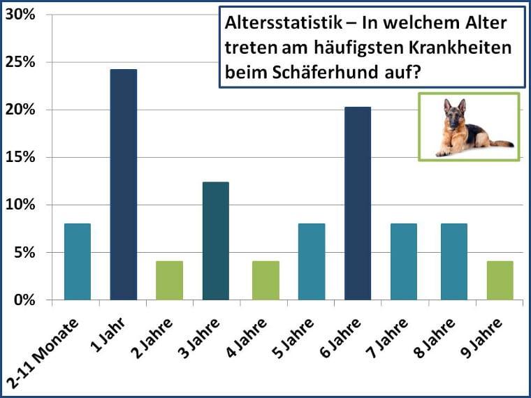 Schäferhund Altersstatistik