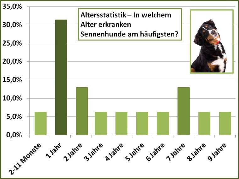Schadensstatistik für Sennenhunde