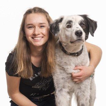 Hunde-Op Versicherung für Mischling