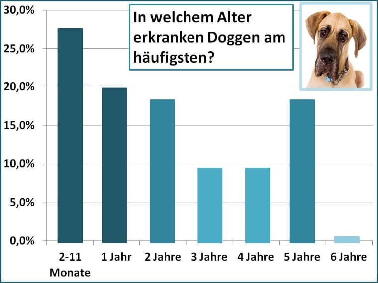 Altersstatistik bei der Dogge
