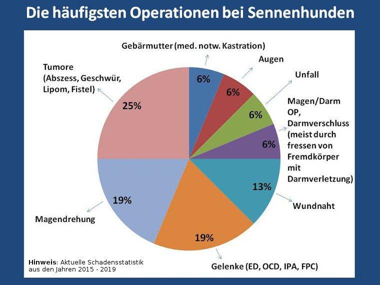 Statistik über die häufigsten Operationen bei Sennenhunden