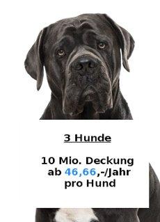 Kampfhundehaftpflicht Angebot