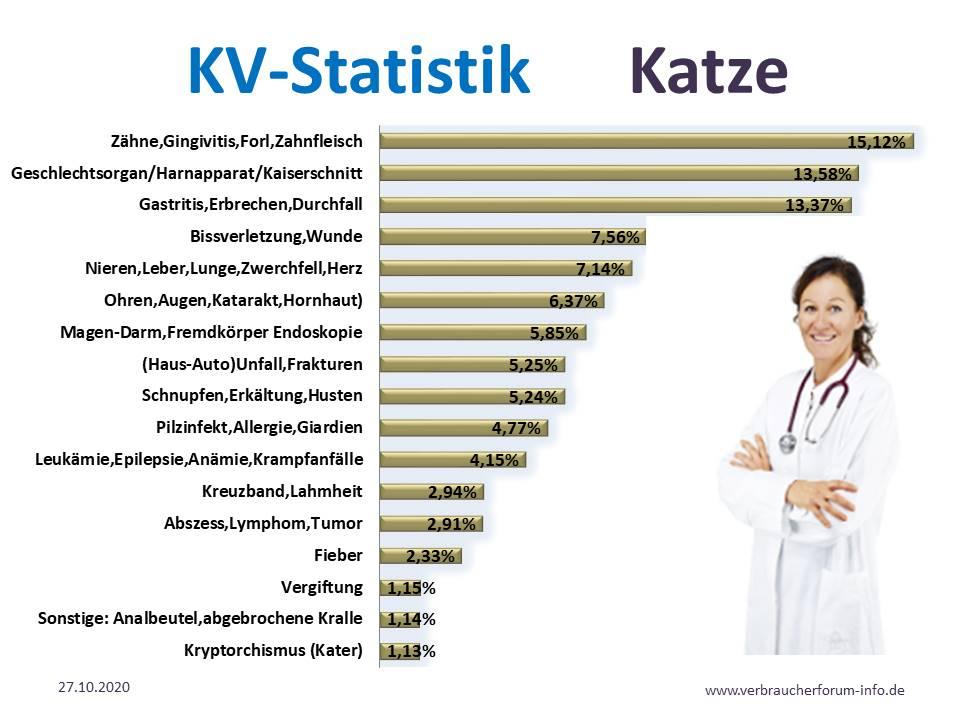Krankheiten Statistik für Katzen beim Tierarzt