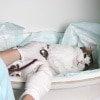 Tumor Op bei der Katze